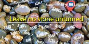 Leave no stone unturned