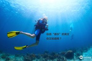 """俗語""""潛水""""的英文你又知道嗎?"""