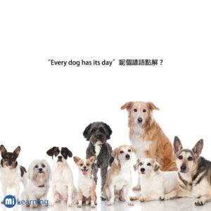 Every dog has it's day 呢個諺語點解?
