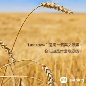 Last straw 這個英文諺語是什麼意思嗎?